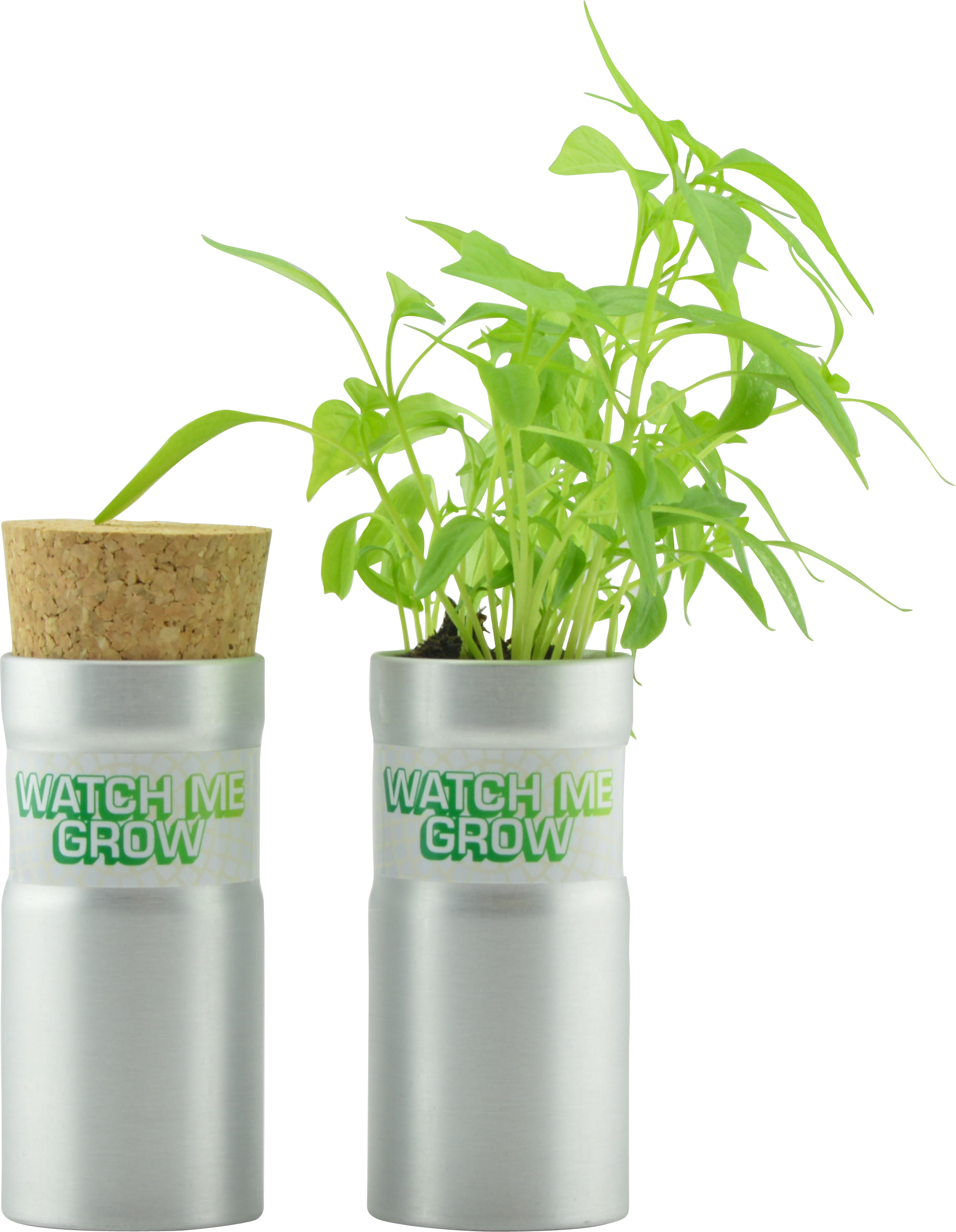 Corporate Desktop Garden Tube - Flower Set