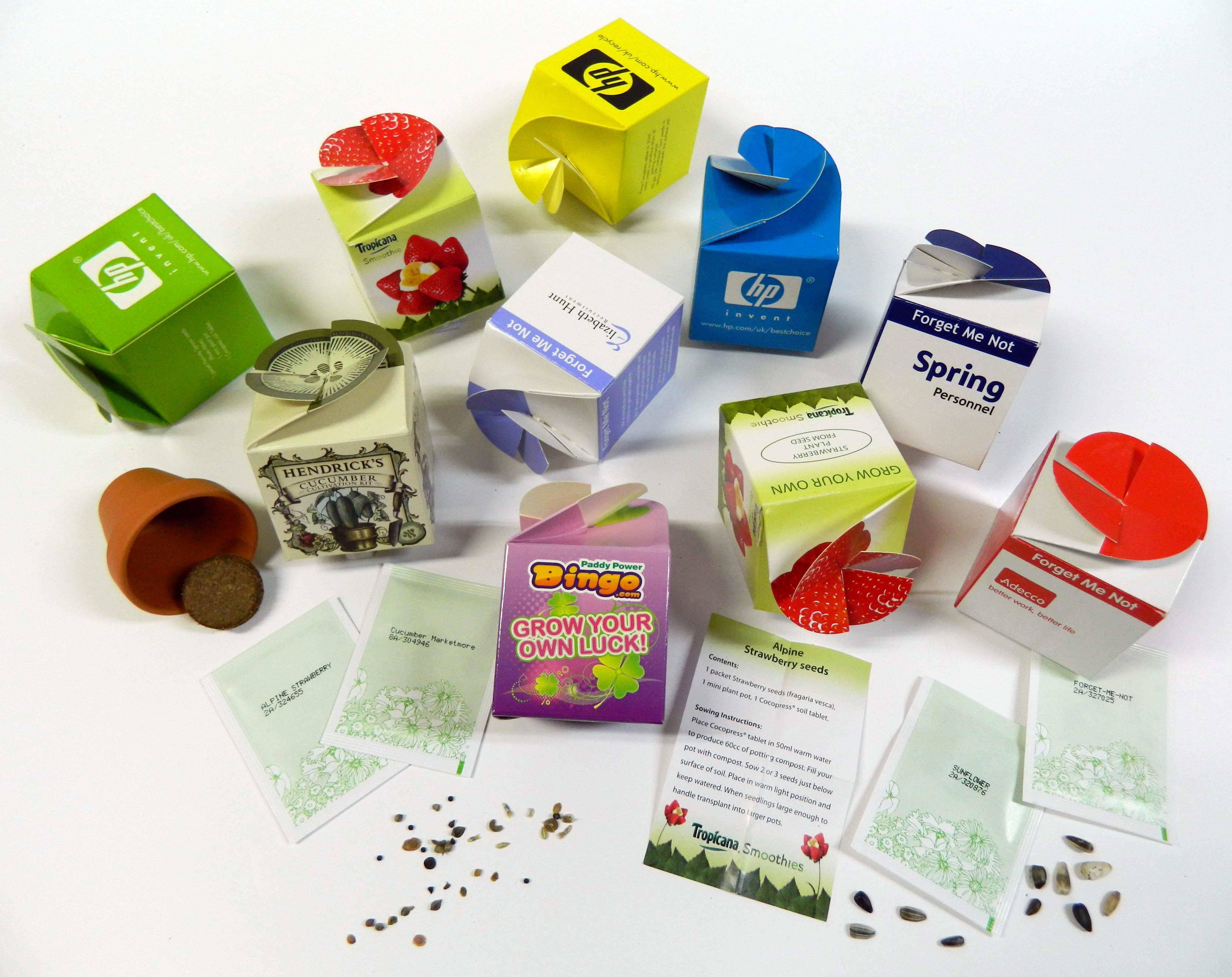Promotional Flower set - Tiny Terracotta Cube