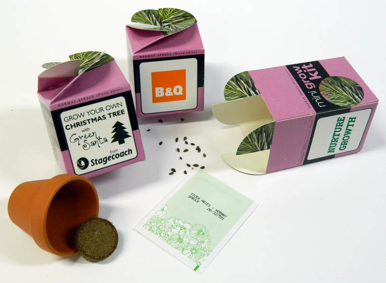 Personalised Flower set - Tiny Terracotta Cube