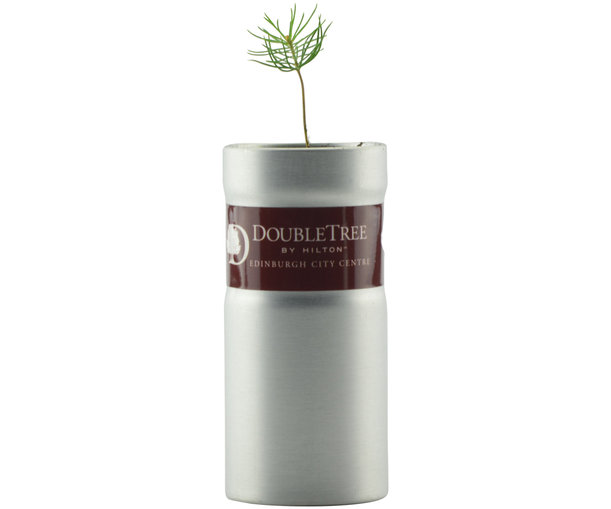 Imprinted Desktop Garden Tube - Flower Set